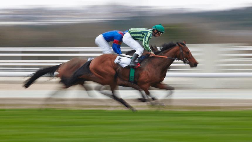 A importância da glicina para cavalos atletas