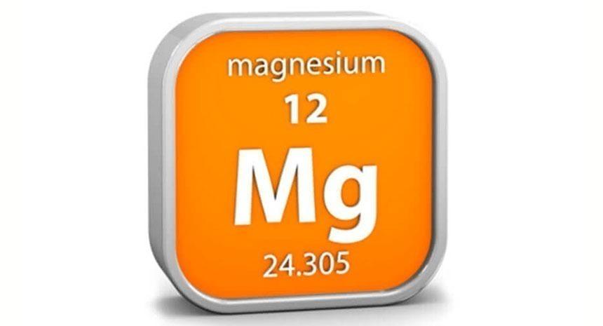 A importância do magnésio na dieta dos equinos
