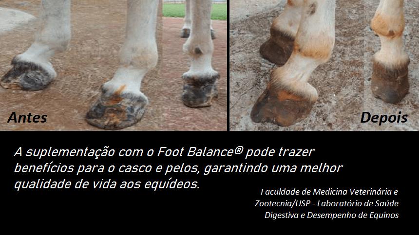 FOOT BALANCE Suplemento para cascos