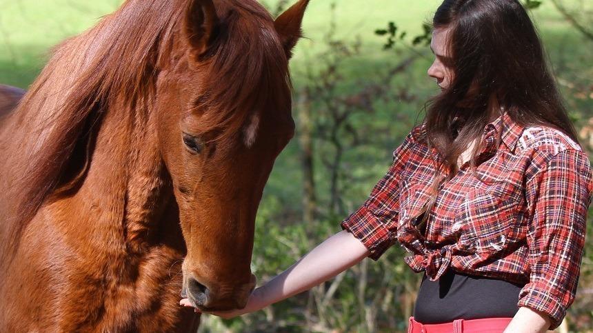 Novo conceito da suplementação e alimentação do cavalo atleta