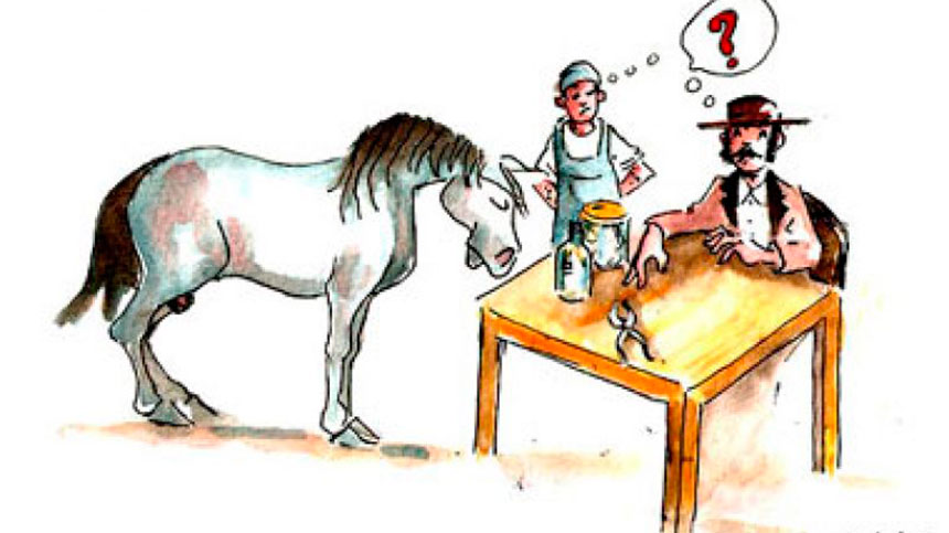 O que temos no mercado hoje paratratar a diarreia de nossos animais?
